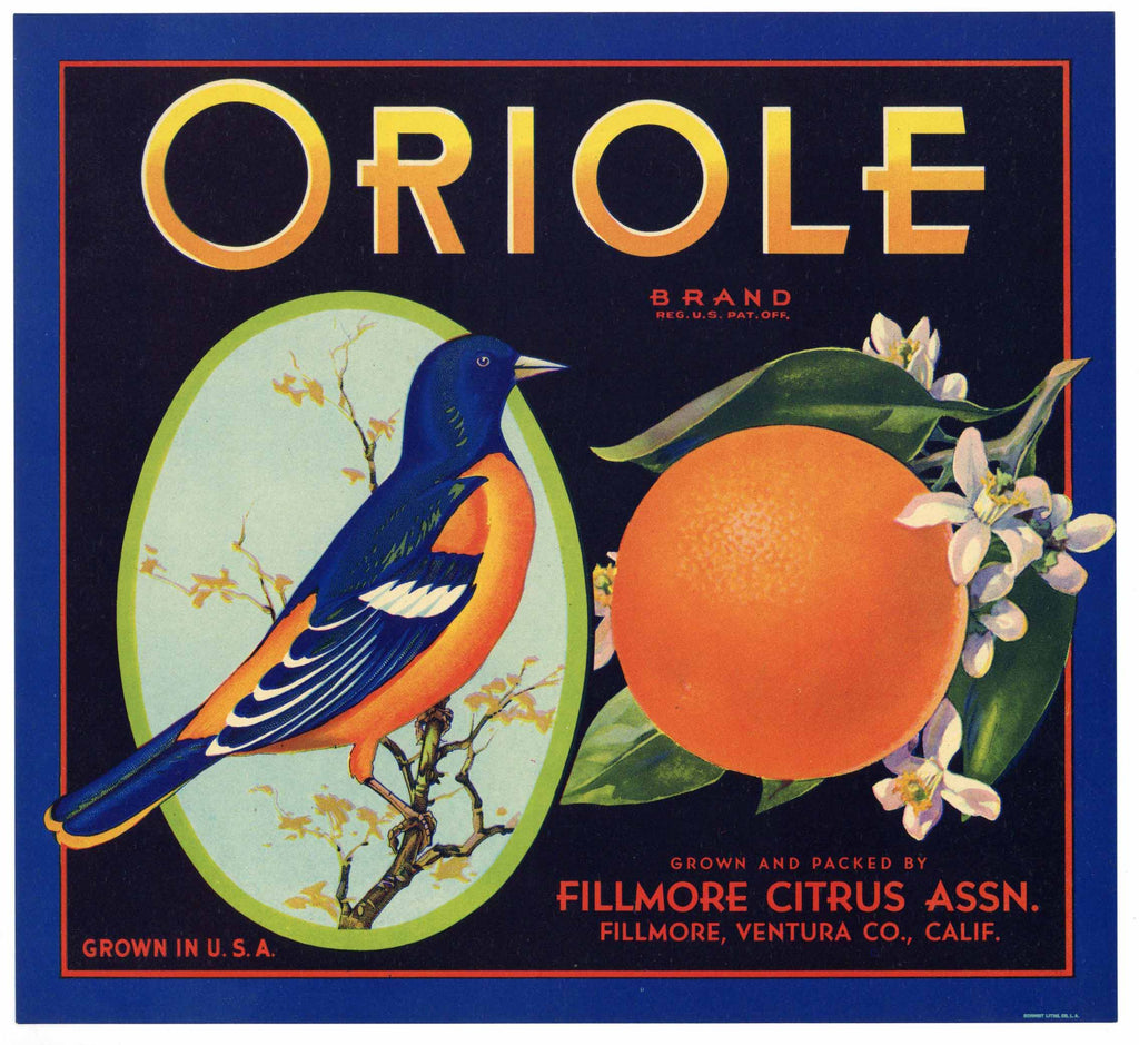 Oriole Brand Vintage Ventura County Orange Crate Label