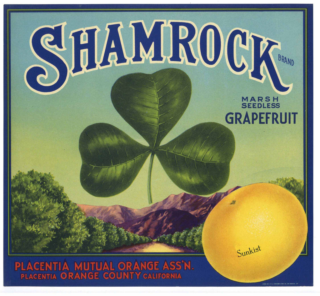 Shamrock Brand Vintage Placentia Grapefruit Crate Label