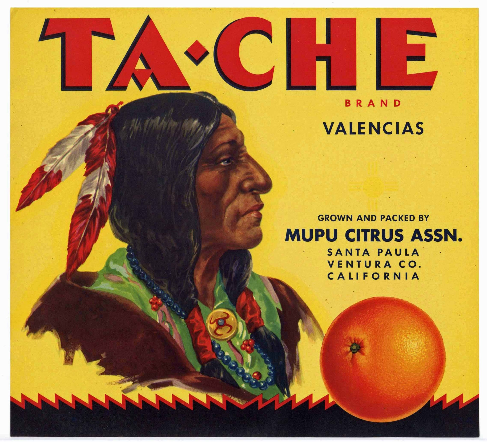 Ta-Che Brand Vintage Santa Paula Orange Crate Label