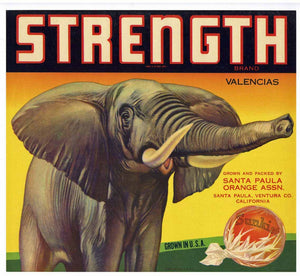 Strength Brand Vintage Santa Paula Orange Crate Label
