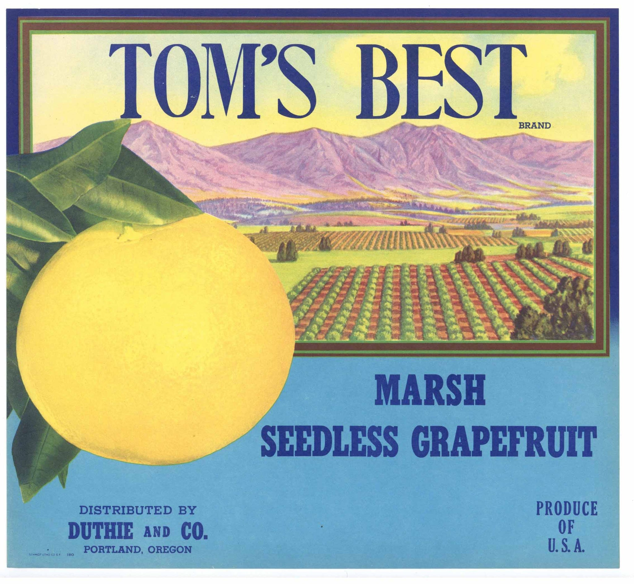 Tom's Best Brand Vintage Grapefruit Crate Label