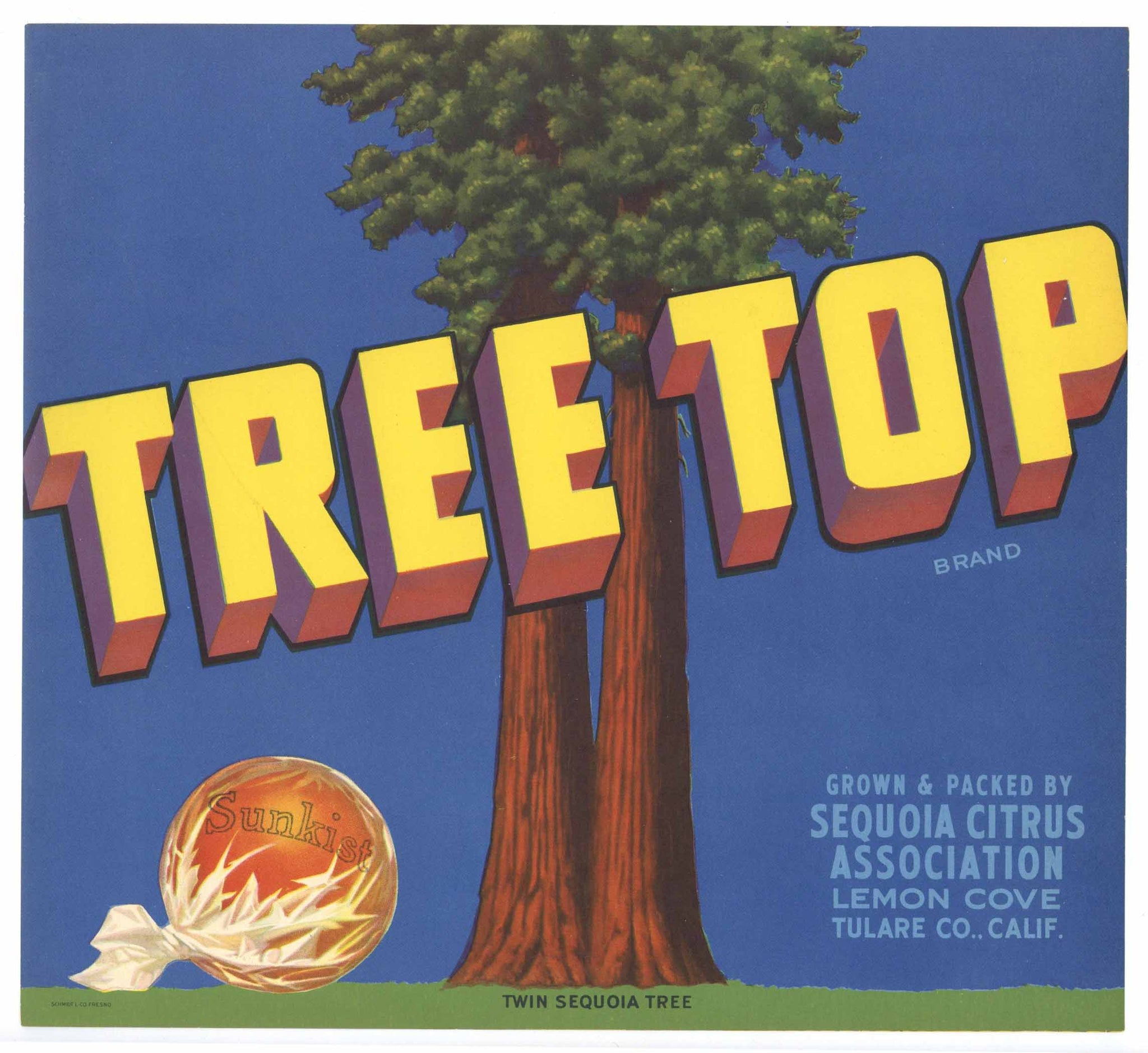 Tree Top Brand Vintage Orange Crate Label