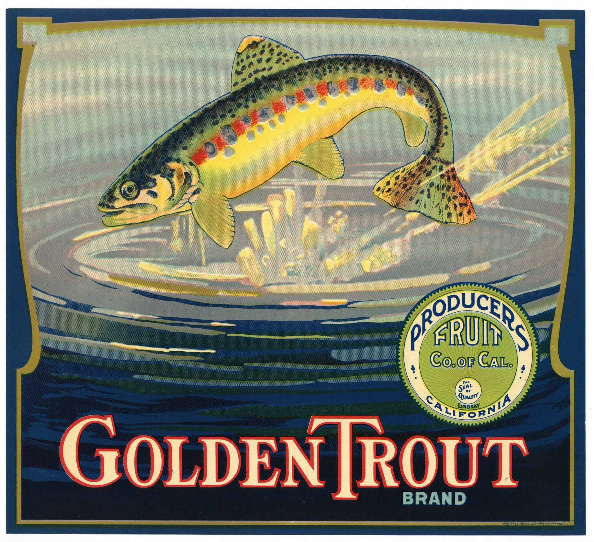 Golden Trout Brand Vintage Tulare County Orange Crate Label, Producers Fruit
