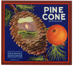 Pinecone Brand Vintage East Highlands Orange Crate Label