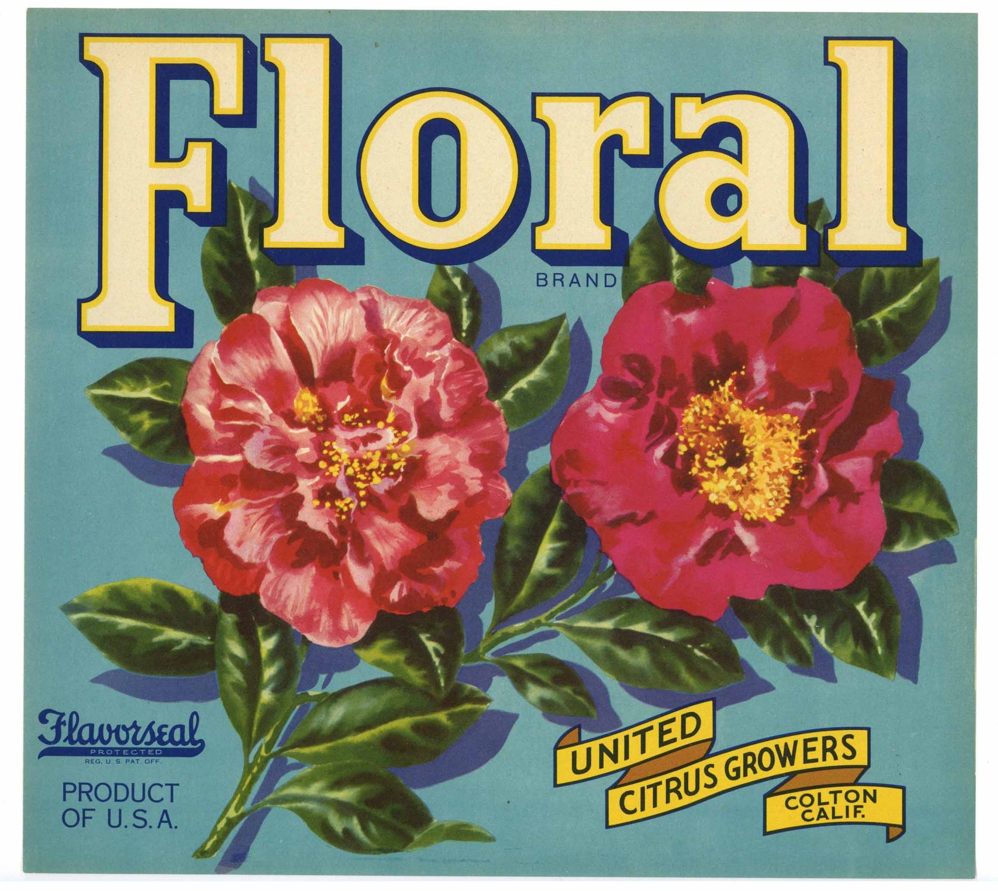 Floral Brand Vintage Colton Orange Crate Label