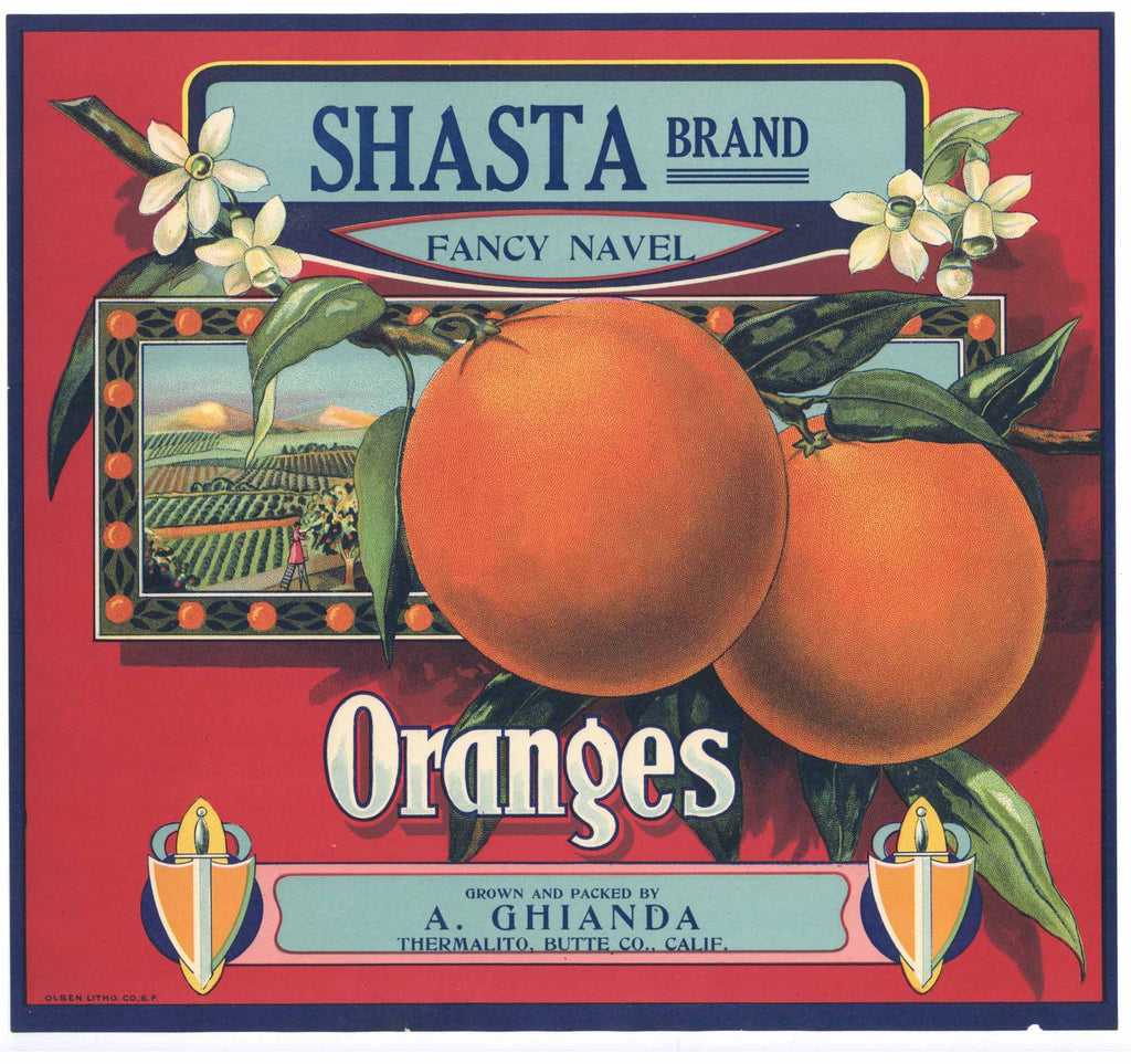 Shasta Brand Vintage Butte County Orange Crate Label