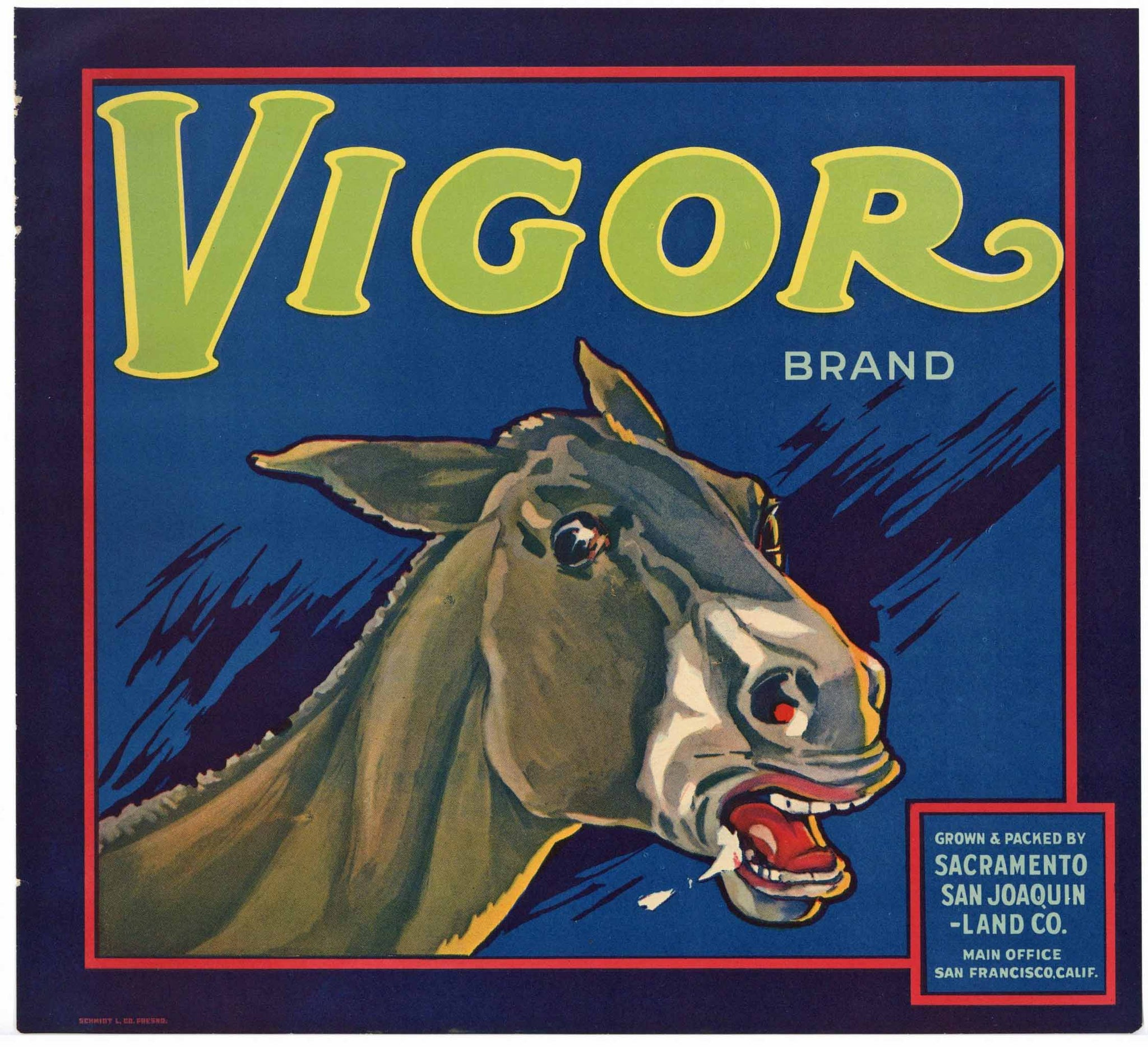 Vigor Brand Vintage Orange Crate Label