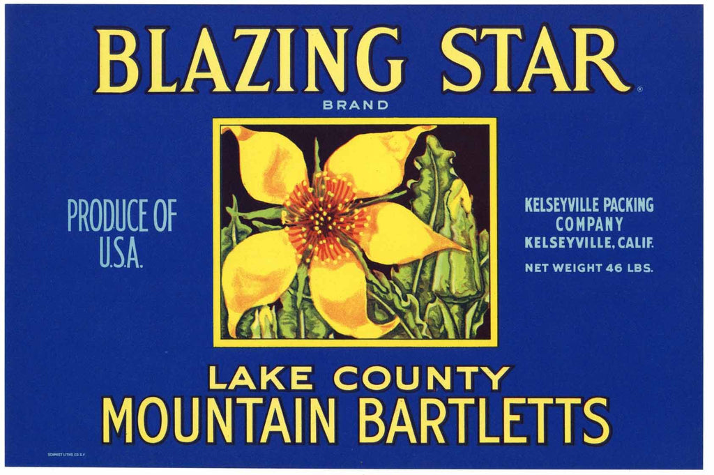 Blazing Star Brand Vintage Lake County California Pear Crate Label, o