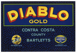 Diablo Gold Brand Vintage Contra Costa Pear Crate Label