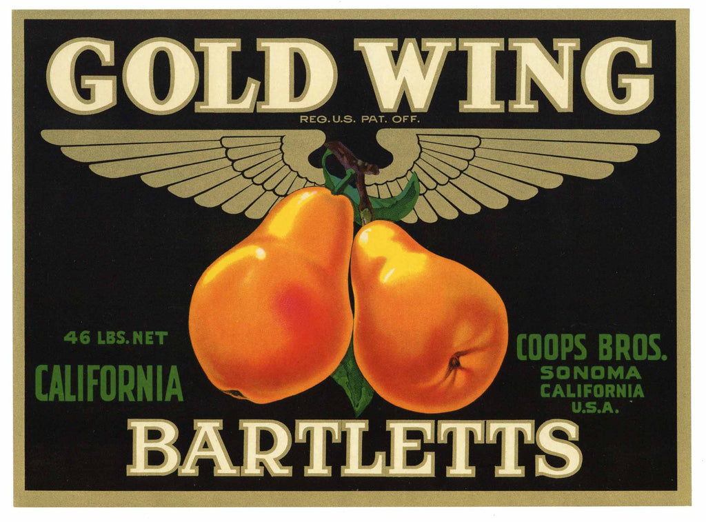 Gold Wing Brand Vintage Sonoma California Pear Crate Label
