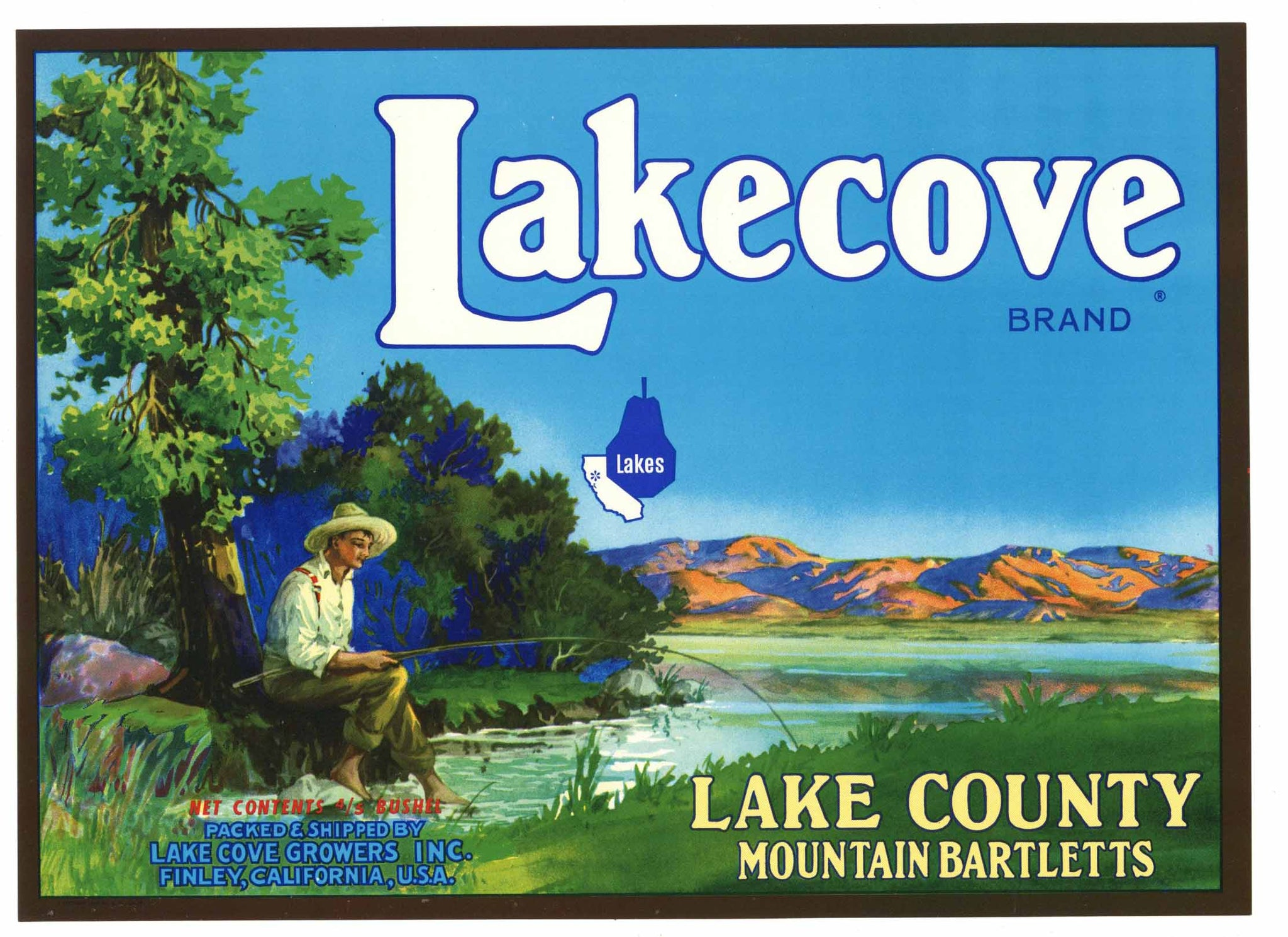 Lakecove Brand Vintage Lake County California Pear Crate Label