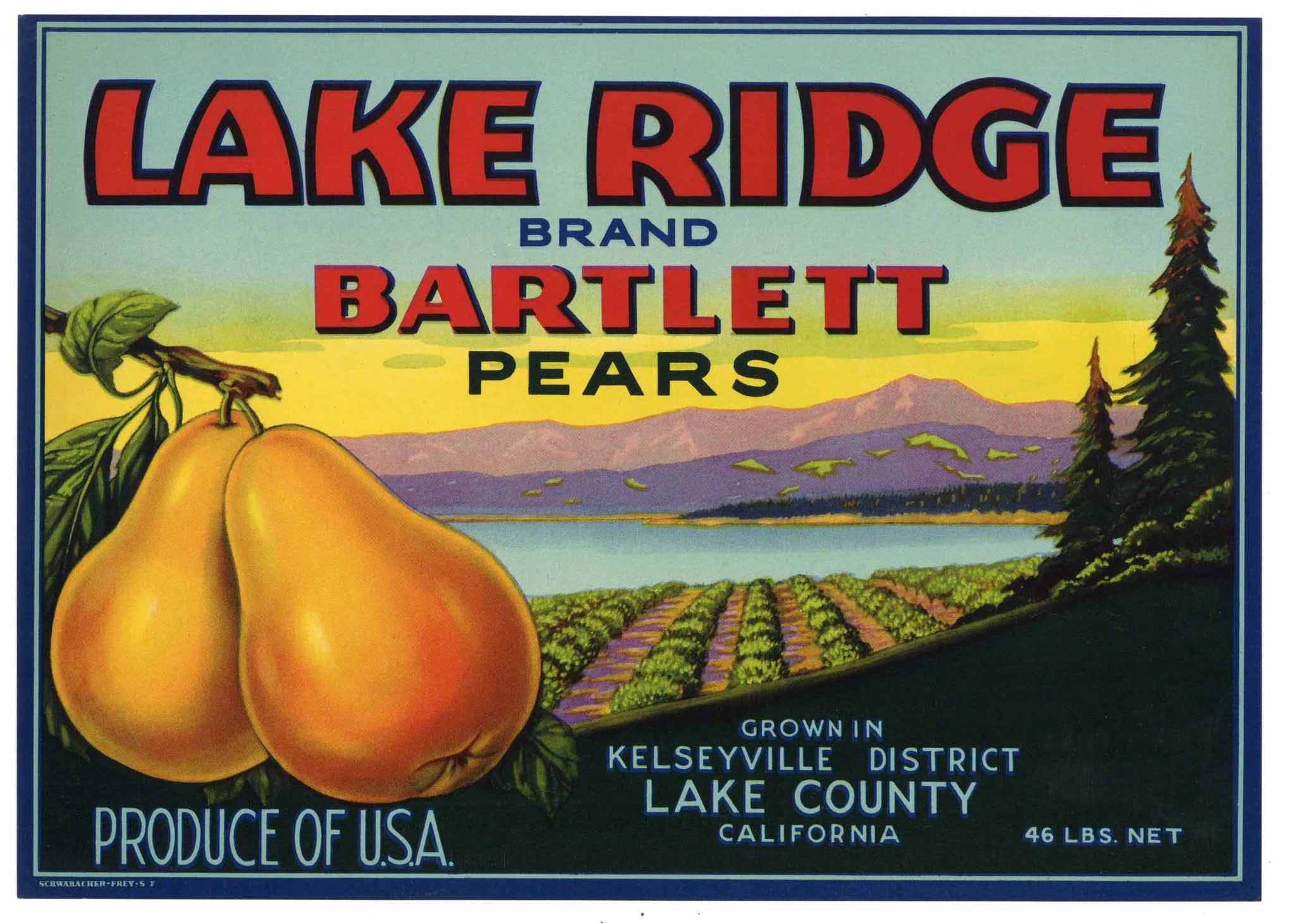 Lake Ridge Brand Vintage Lake County California Pear Crate Label
