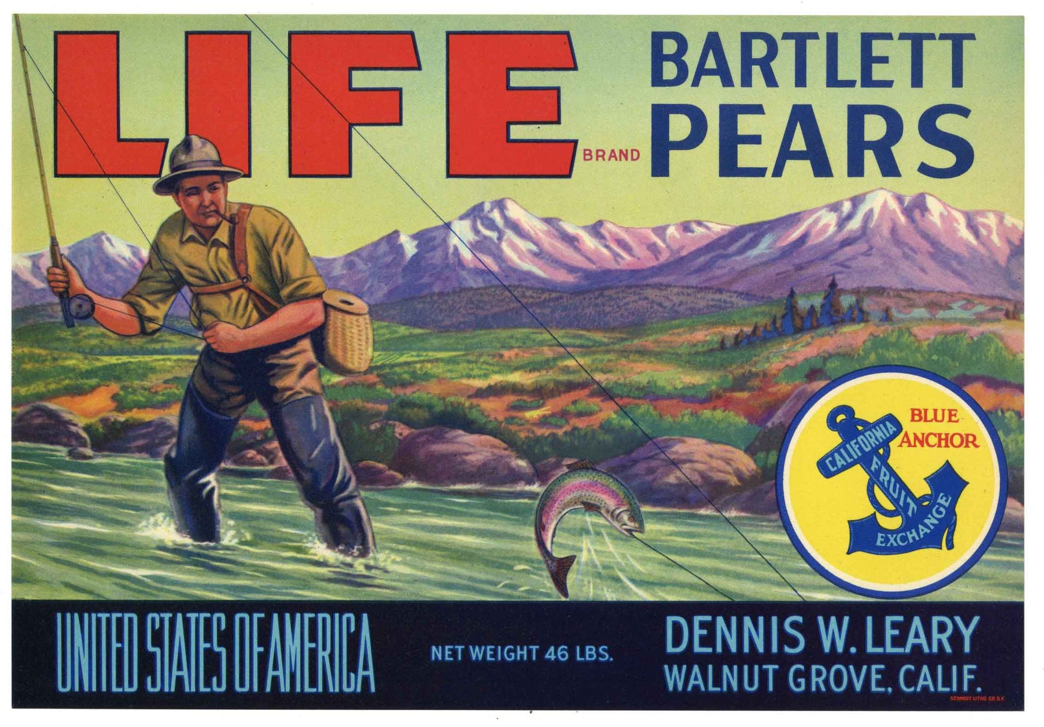 Life Brand Vintage Walnut Grove California Pear Crate Label, 46 lbs