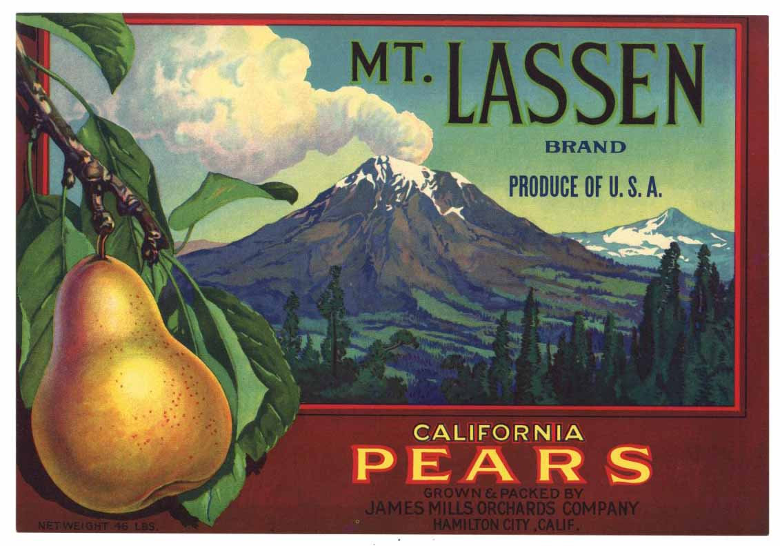 Mt. Lassen Brand Vintage Pear Fruit Crate Label L