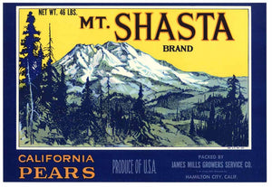 Mt. Shasta Brand Vintage Pear Fruit Crate Label, L
