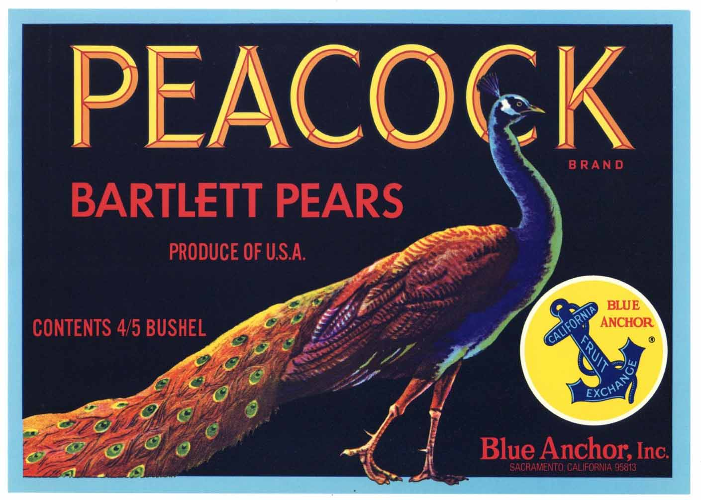 PEACOCK Brand Vintage Pear Crate Label t (P161B)