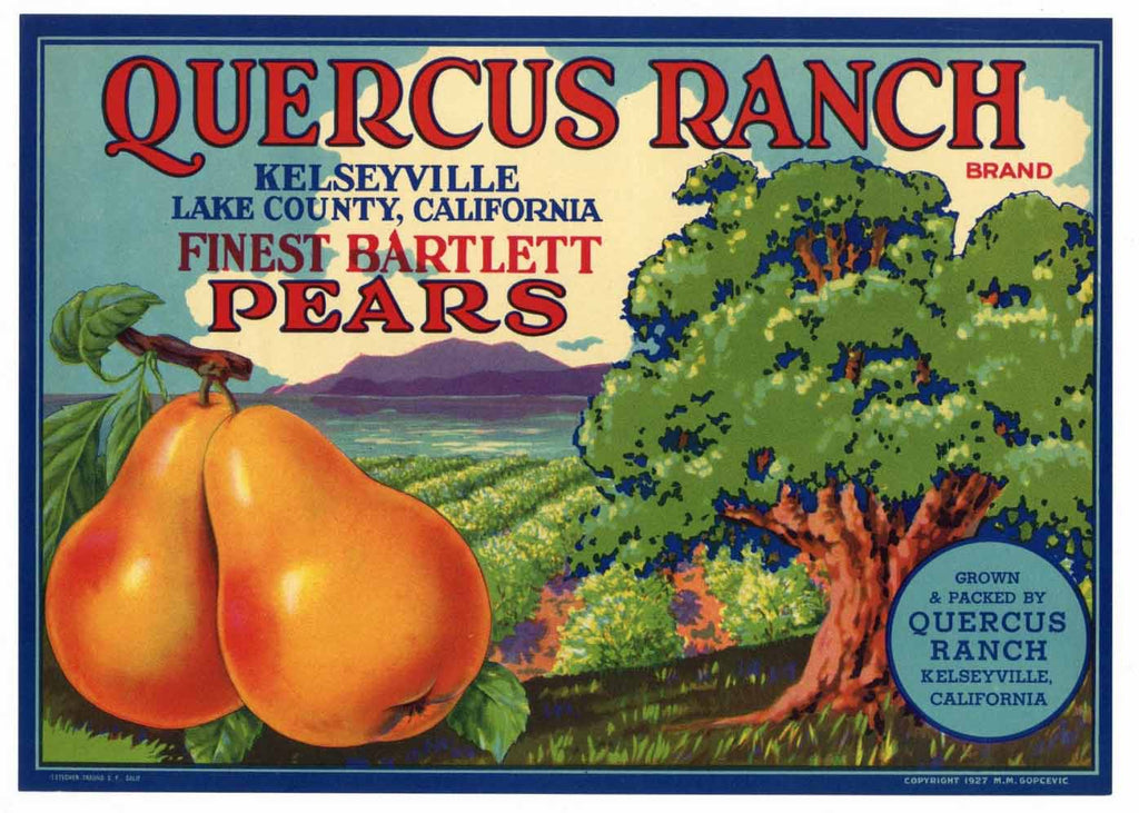 Quercus Ranch Brand Vintage Lake County California Pear Crate Label