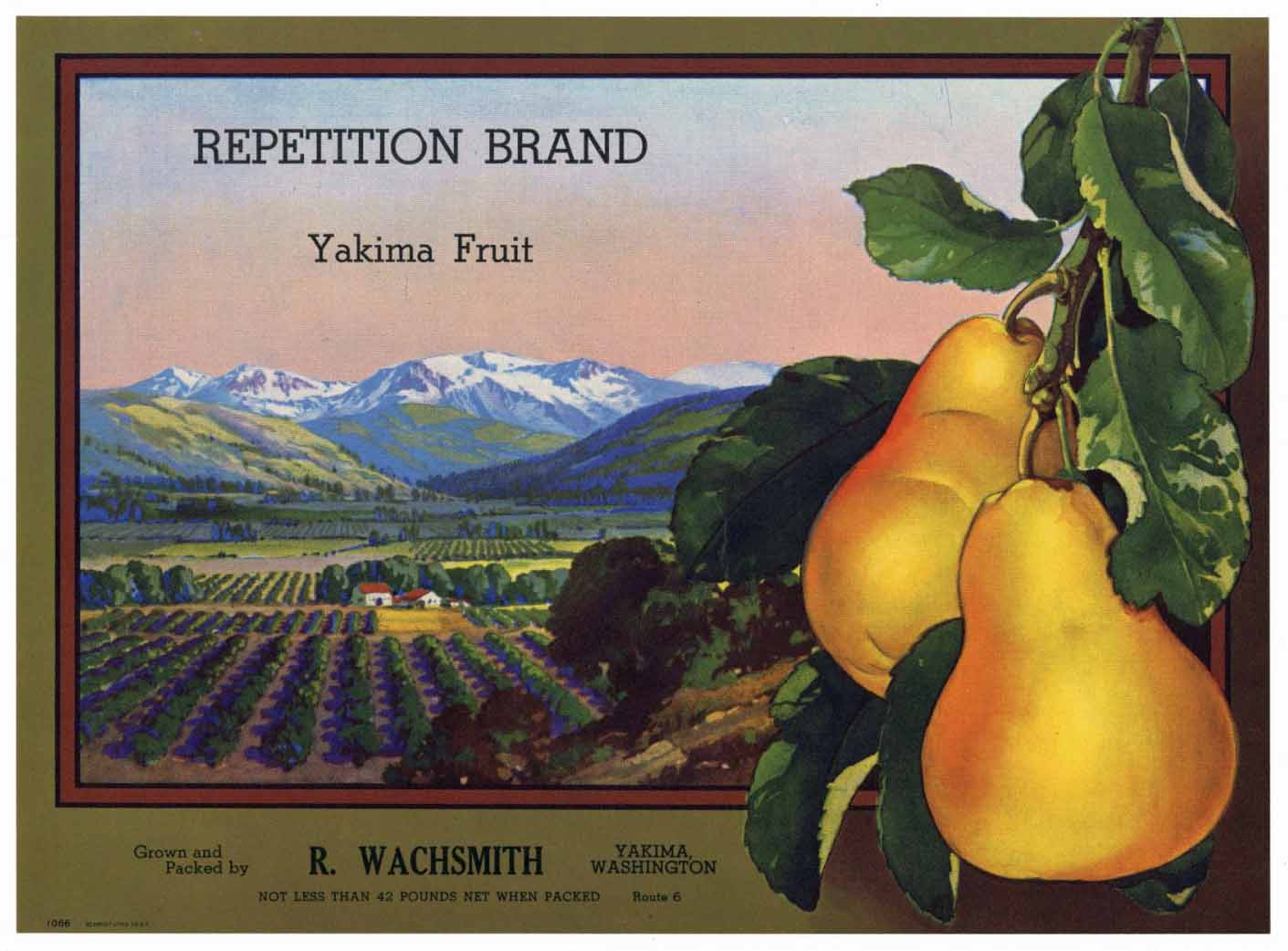 REPETITION Brand Vintage Pear Crate Label s (P190)