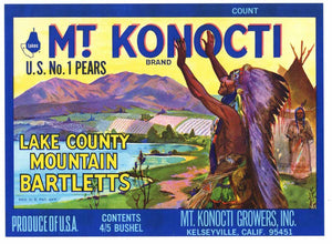 Mt. Konocti Brand Vintage Lake County California Pear Crate Label