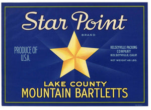 STAR POINT Brand Vintage Pear Crate Label (P214)