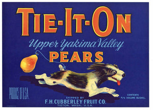 Tie-It-On Brand Vintage Tieton, Washington Pear Crate Label