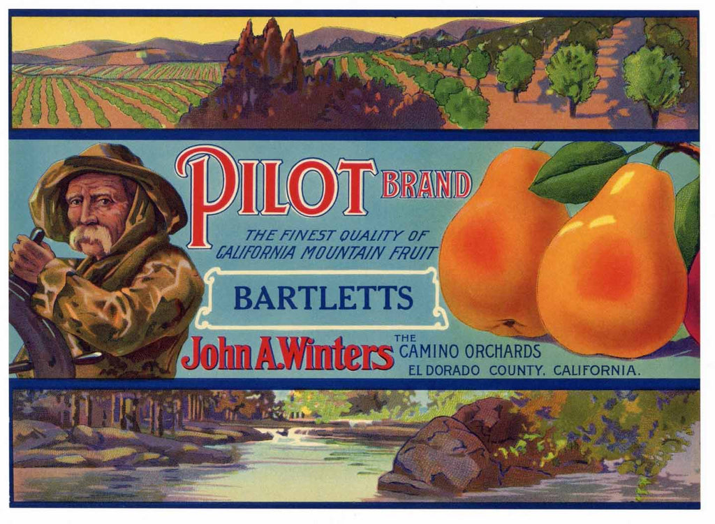 Pilot Brand Vintage El Dorado County California Pear Crate Label