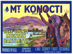 Mt. Konocti Brand Vintage Lake County Pear Crate Label, Goose, Square