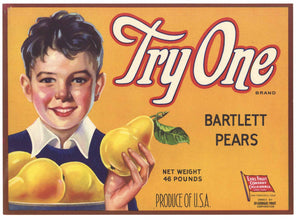 Try One Brand Vintage Pear Crate Label, y