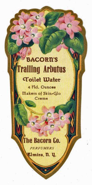 Bacorn's Trailing Arbutus Brand Vintage New York Toilet Water Bottle Label
