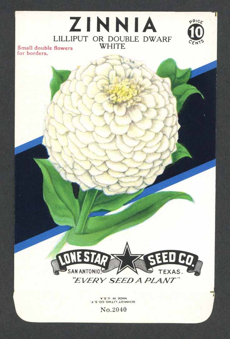 Zinnia Vintage Lone Star Seed Packet, Double White