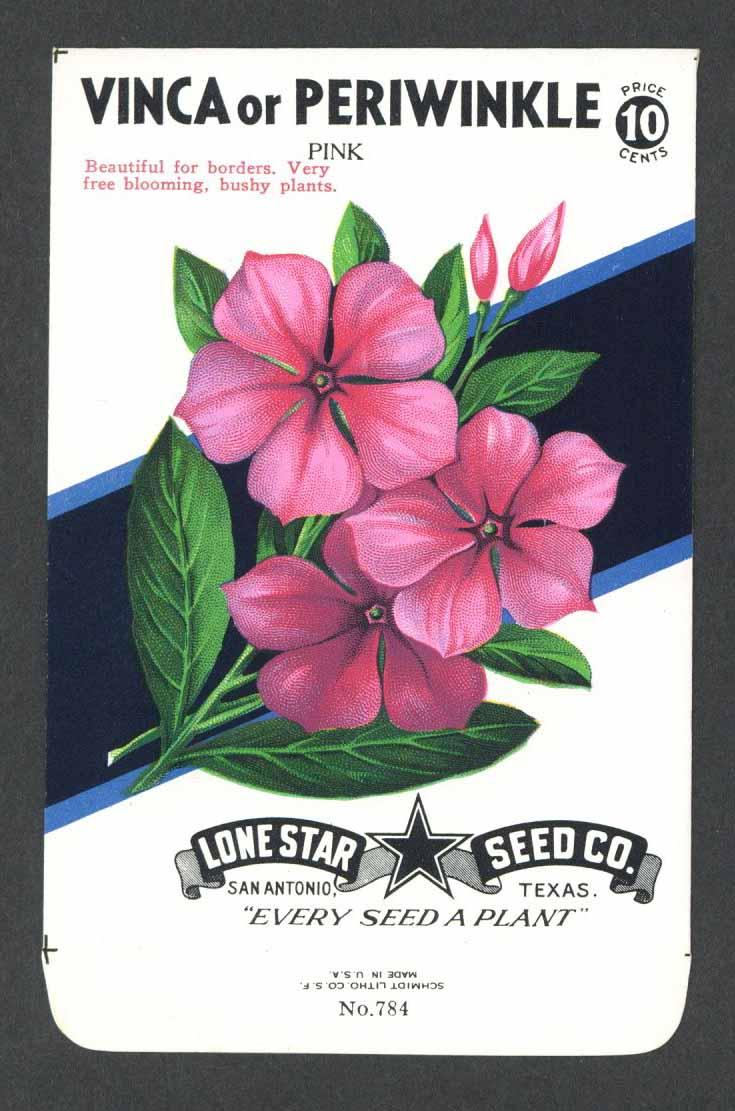 Vinca or Periwinkle Vintage Lone Star Seed Packet