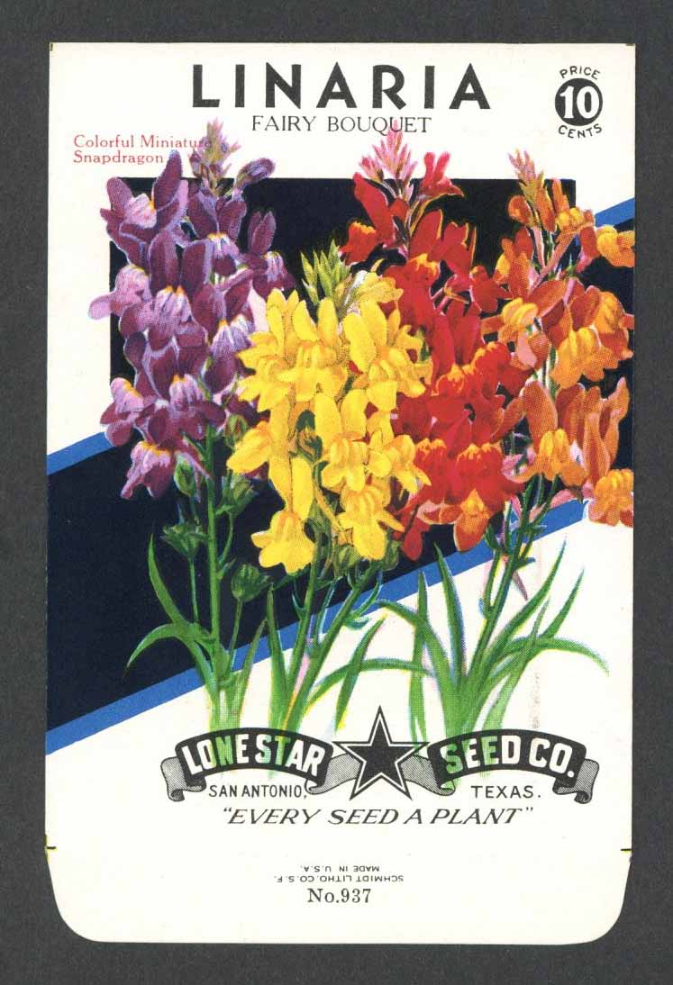 Linaria Vintage Lone Star Seed Packet