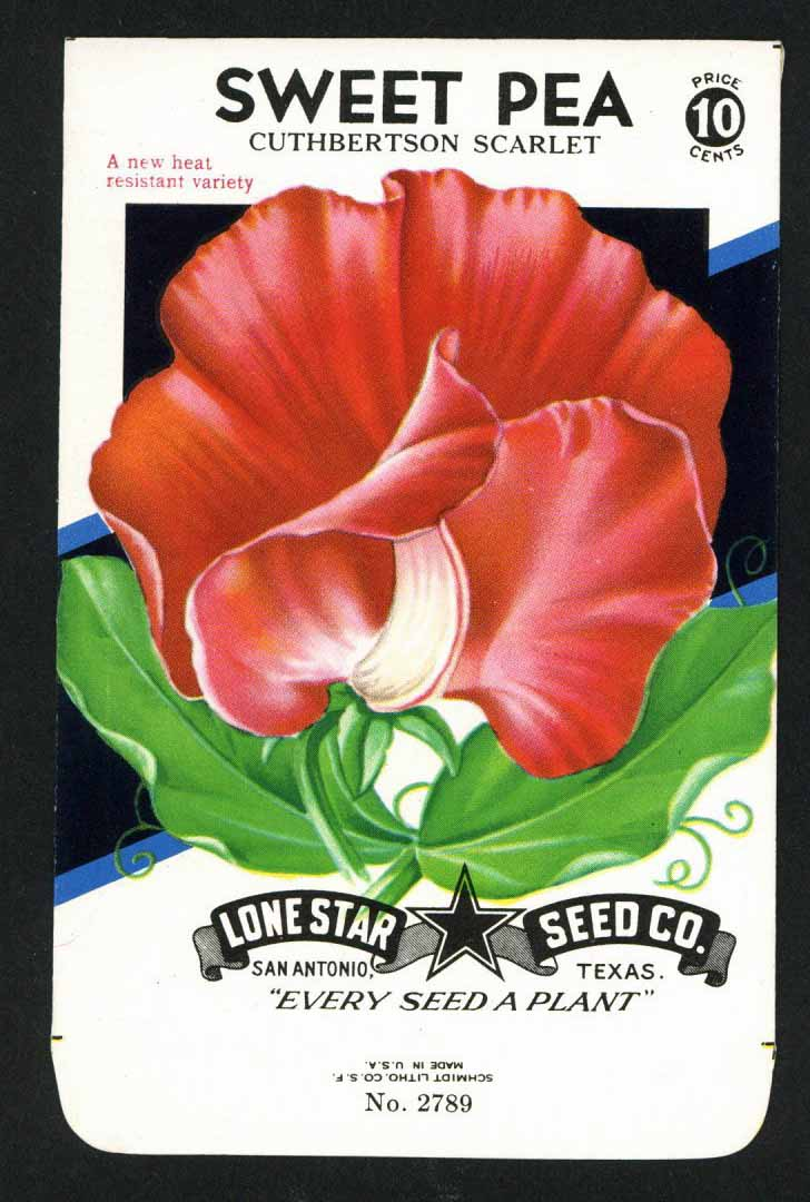 Sweet Pea Vintage Lone Star Seed Packet, Cuthbertson Scarlet