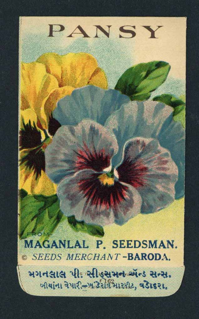 Pansy Antique Maganlal Seed Packet, India, yellow, blue
