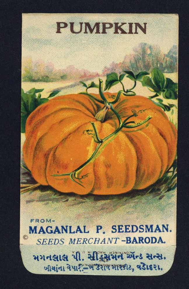 Pumpkin Antique Maganlal Seed Packet, India