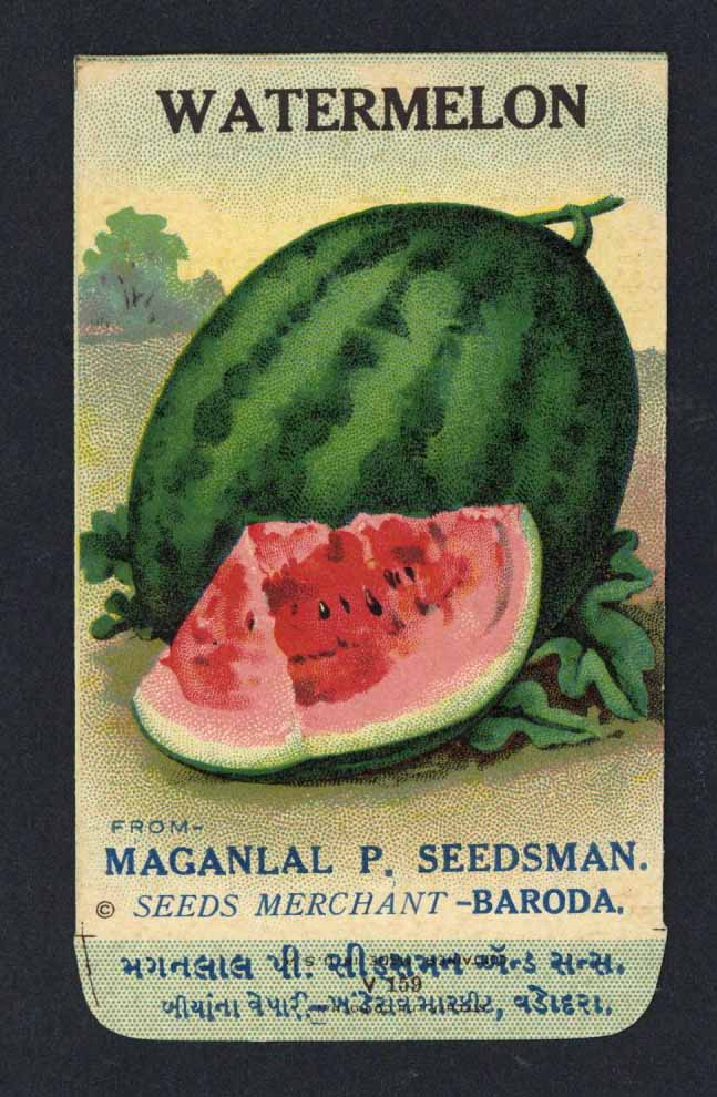 Watermelon Antique Maganlal Seed Packet, India