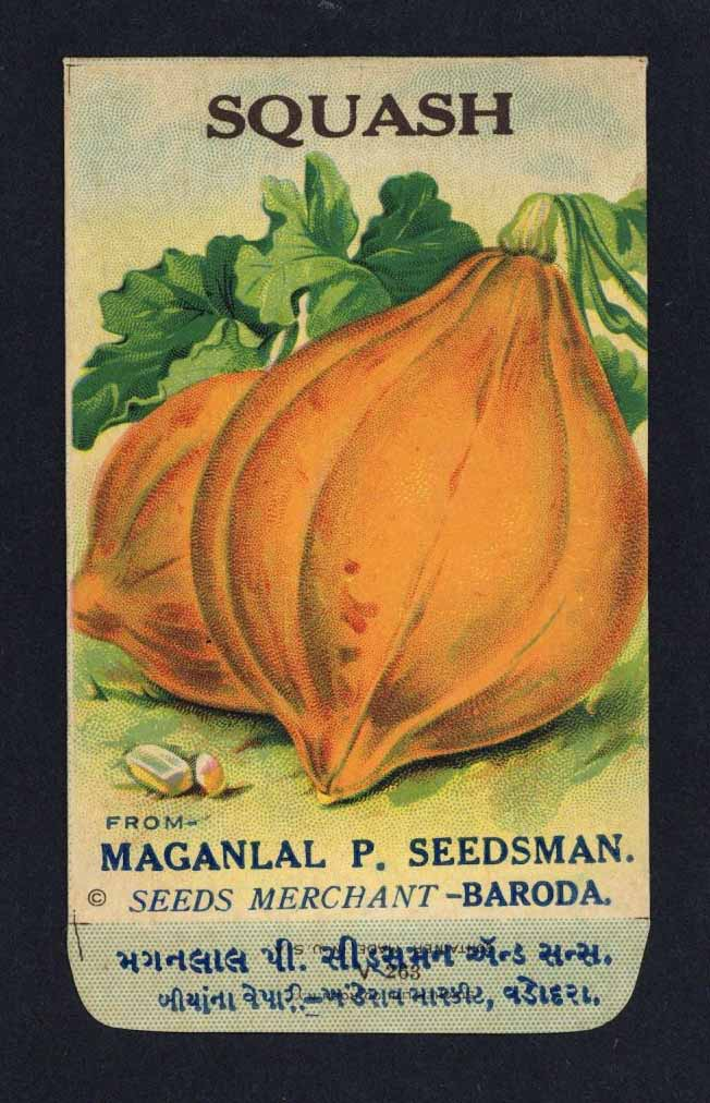 Squash Antique Maganlal Seed Packet, India, yellow