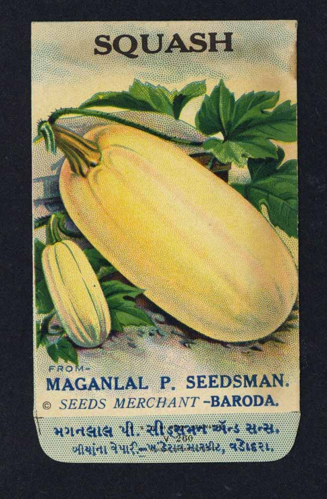 Squash Antique Maganlal Seed Packet, India, white
