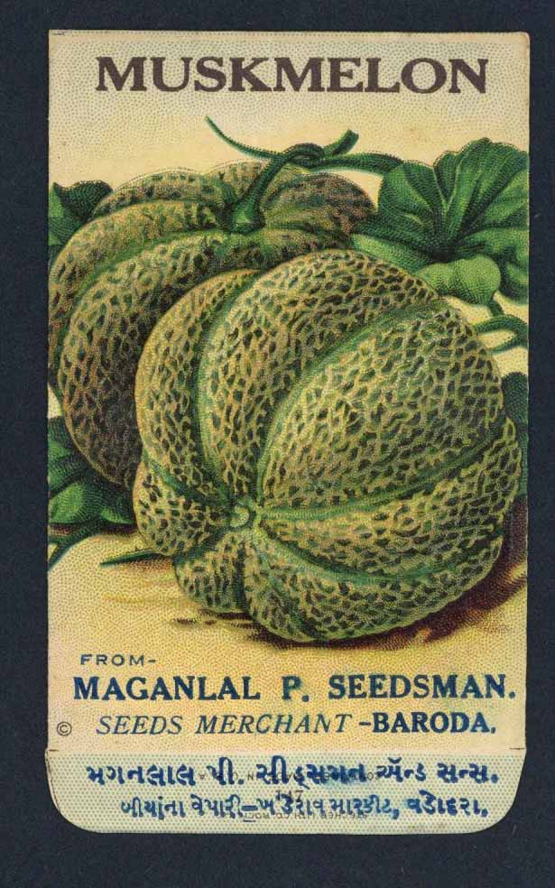 Muskmelon Antique Maganlal Seed Packet, India, two