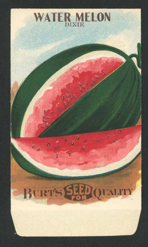 Watermelon Antique Burt's Seed Packet, Dixie