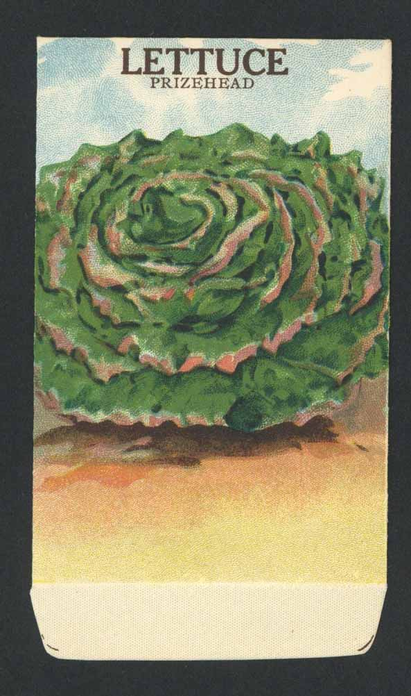 Lettuce Antique Stock Seed Packet, Prizehead