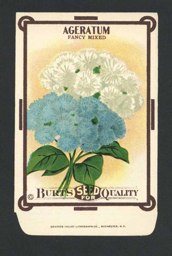 Ageratum Antique Burt's Seed Packet