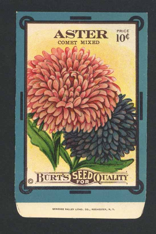 Aster Antique Burt's Seed Packet, Comet Mixed