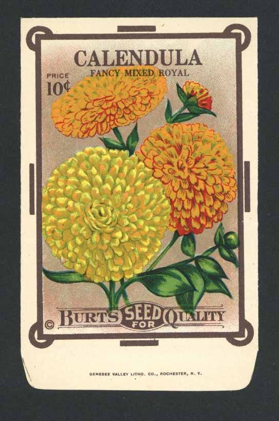 Calendula Antique Burt's Seed Packet