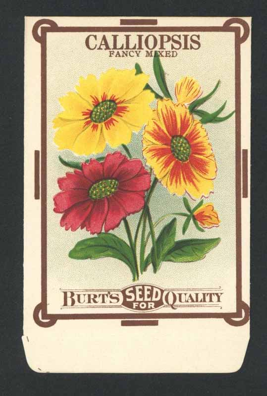 Calliopsis Antique Burt's Seed Packet