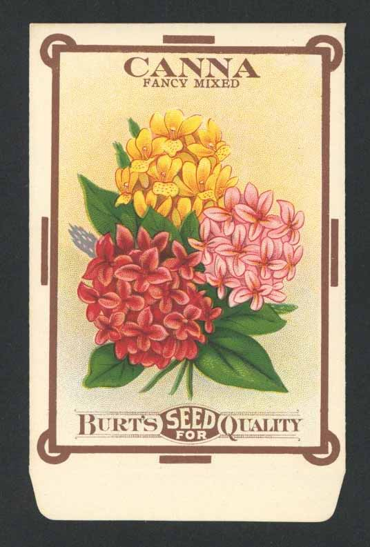Canna Antique Burt's Seed Packet