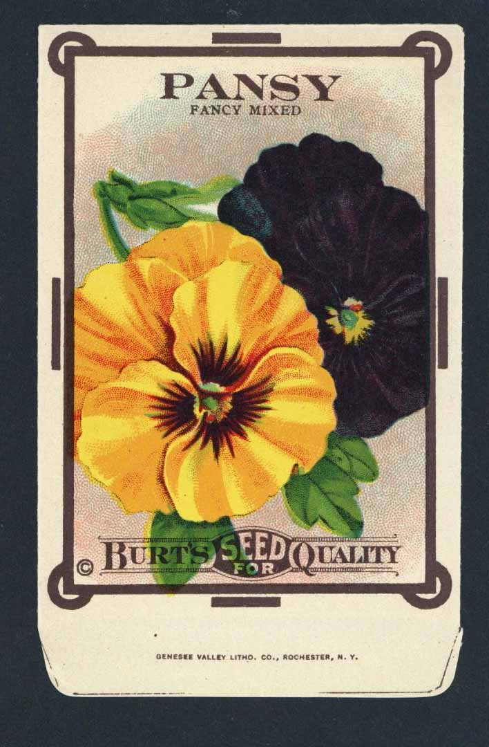 Pansy Antique Burt's Seed Packet