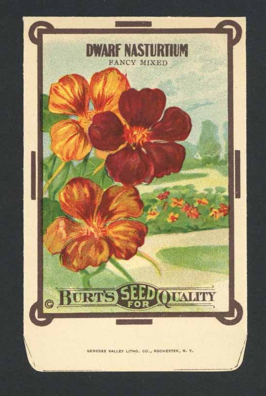 Dwarf Nasturtium Antique Burt's Seed Packet