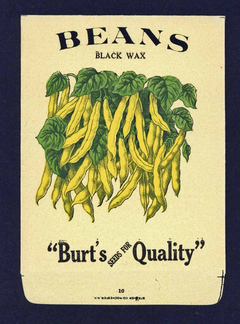 Beans Antique Burt's Seed Packet, Black Wax