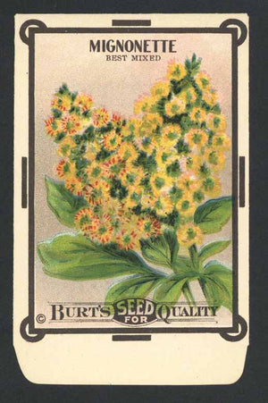 Mignonette Antique Burt's Seed Packet